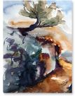 Olivenbaum, Kreta